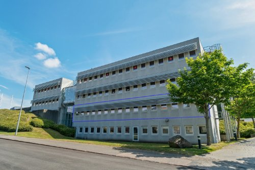 Lejemål på Bavnehøjvej 12, stue, 6700 Esbjerg